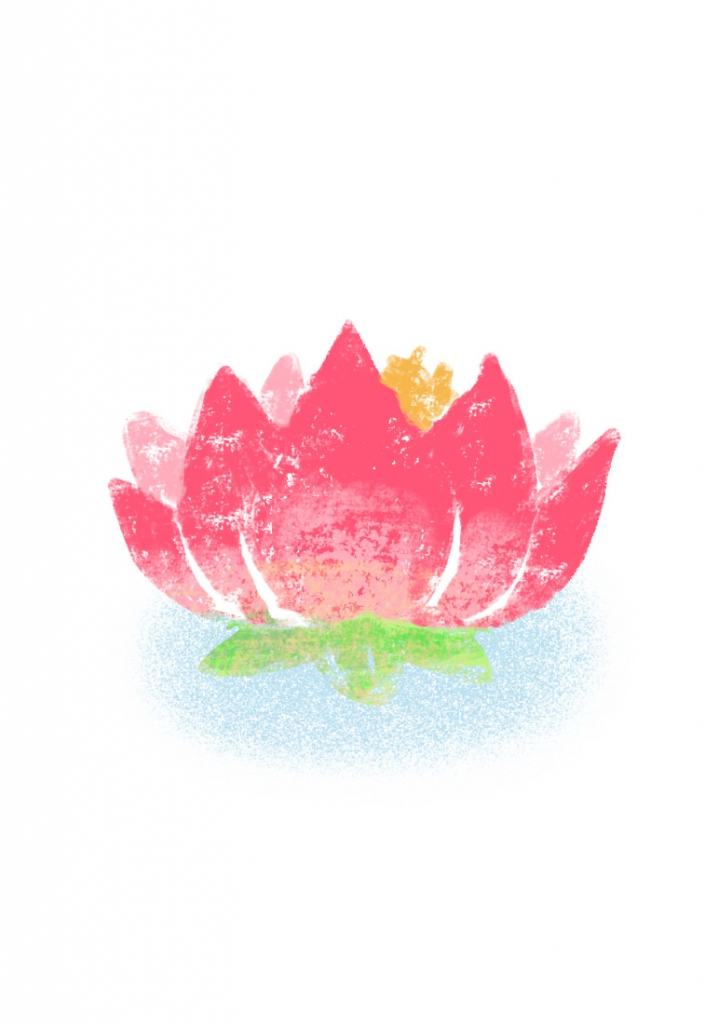 illustration of a pink lotus